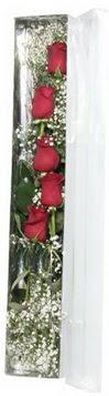 Ankara Anadolu çiçek siparişi sitesi   5 adet gülden kutu güller