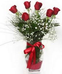 7 adet gülden cam içerisinde güller  Ankara Anadolu 14 şubat sevgililer günü çiçek