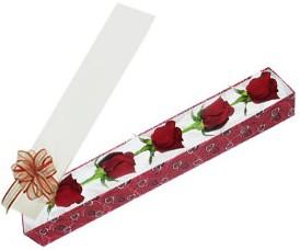 Ankara Anadolu internetten çiçek satışı  kutu içerisinde 5 adet kirmizi gül