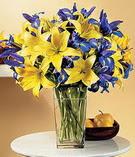 Ankara Anadolu anneler günü çiçek yolla  Lilyum ve mevsim  çiçegi özel