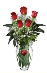 Ankara Anadolu internetten çiçek siparişi  5 adet kirmizi gül ve kalp çubuklu