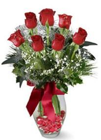 Ankara Anadolu internetten çiçek siparişi  7 adet kirmizi gül cam vazo yada mika vazoda