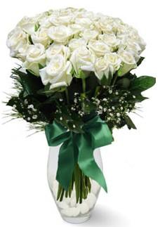 19 adet essiz kalitede beyaz gül  Ankara Anadolu çiçekçiler