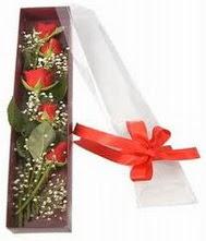 kutu içinde 5 adet kirmizi gül  Ankara Anadolu internetten çiçek siparişi