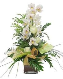 Ankara Anadolu çiçek mağazası , çiçekçi adresleri  cam vazo içerisinde 1 dal orkide çiçegi