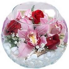 Ankara Anadolu çiçekçi telefonları  fanus içinde 1 kandil orkide 3 gül aranjmani
