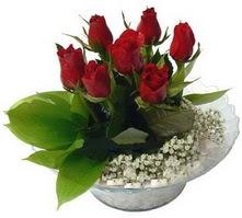 Ankara Anadolu internetten çiçek satışı  cam yada mika içerisinde 5 adet kirmizi gül