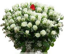 Ankara Anadolu internetten çiçek satışı  100 adet beyaz 1 adet kirmizi gül buketi