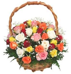 Ankara Anadolu internetten çiçek siparişi  29 adet rengarenk gül sepeti tanzimi
