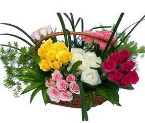 Ankara Anadolu ucuz çiçek gönder  35 adet rengarenk güllerden sepet tanzimi