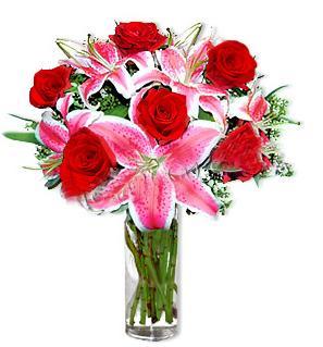 Ankara Anadolu çiçek yolla  1 dal cazablanca ve 6 kırmızı gül çiçeği