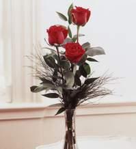 Ankara Anadolu internetten çiçek satışı  Vazoda 3 adet güzel gül