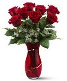 8 adet kırmızı gül sevgilime hediye  Ankara Anadolu Anadolu İnternetten çiçek siparişi