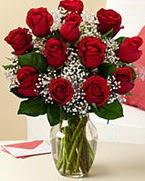 Sevgilime hediye 9 adet 1.ci kalite gül  Ankara Anadolu anneler günü çiçek yolla