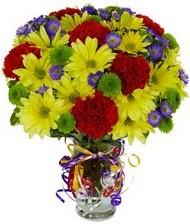 En güzel hediye karışık mevsim çiçeği  Ankara Anadolu hediye çiçek yolla