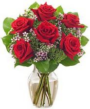 Kız arkadaşıma hediye 6 kırmızı gül  Ankara Anadolu internetten çiçek siparişi
