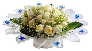 Ankara Anadolu çiçek online çiçek siparişi  11 adet Beyaz güller özel cam tanzim
