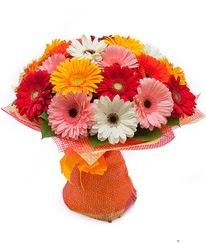 Renkli gerbera buketi  Ankara Anadolu anneler günü çiçek yolla