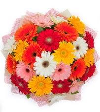 15 adet renkli gerbera buketi  Ankara Anadolu yurtiçi ve yurtdışı çiçek siparişi