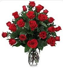 Ankara Anadolu çiçek siparişi sitesi  24 adet kırmızı gülden vazo tanzimi