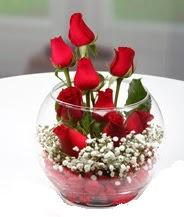 Cam fanus içerisinde 9 adet kırmızı gül  Ankara Anadolu çiçek siparişi vermek