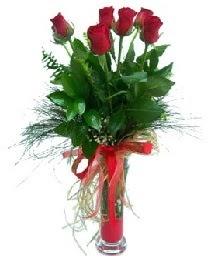 vazo içerisinde 5 kırmızı gül  Ankara Anadolu güvenli kaliteli hızlı çiçek