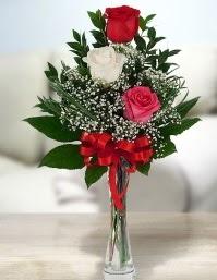 Camda 2 kırmızı 1 beyaz gül  Ankara Anadolu ucuz çiçek gönder