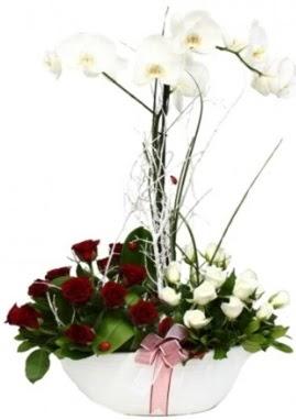 Tek dal beyaz orkide 8 beyaz 8 kırmızı gül  Ankara Anadolu çiçek satışı