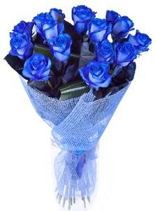 12 adet mavi gül buketi  Ankara Anadolu çiçek servisi , çiçekçi adresleri