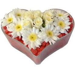 Kalp içerisinde 7 beyaz gül ve papatyalar  Ankara Anadolu internetten çiçek satışı