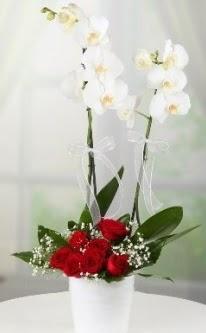 2 dallı beyaz orkide 7 adet kırmızı gül  Ankara Anadolu 14 şubat sevgililer günü çiçek