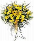 Ankara Anadolu yurtiçi ve yurtdışı çiçek siparişi  Sari kazablanka Ferforje