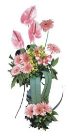 Ankara Anadolu güvenli kaliteli hızlı çiçek  Pembe Antoryum Harikalar Rüyasi