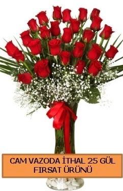 Cam vazoda ithal 1. kalite 25 gül  Ankara Anadolu internetten çiçek satışı