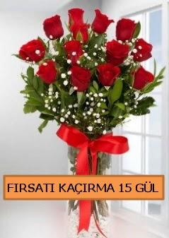 15 İthal kırmızı gül büyük başlı orjinal  Ankara Anadolu çiçek siparişi sitesi