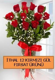 İthal kırmızı 12 adet kaliteli gül  Ankara Anadolu ucuz çiçek gönder