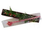 Ankara Anadolu hediye çiçek yolla  3 adet gül.kutu yaldizlidir.