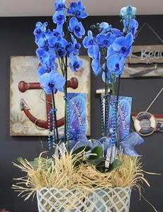 4 dallı özel mavi orkide  Ankara Anadolu çiçek siparişi vermek