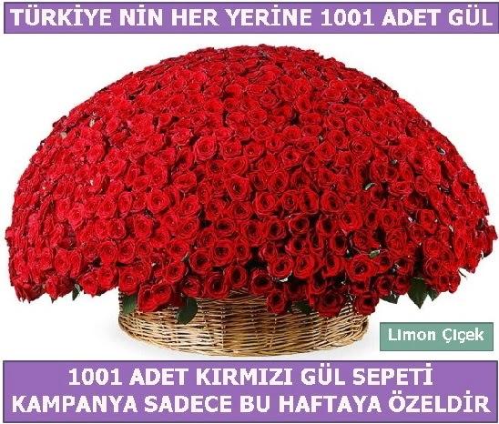1001 Adet kırmızı gül Bu haftaya özel  Ankara Anadolu Anadolu İnternetten çiçek siparişi