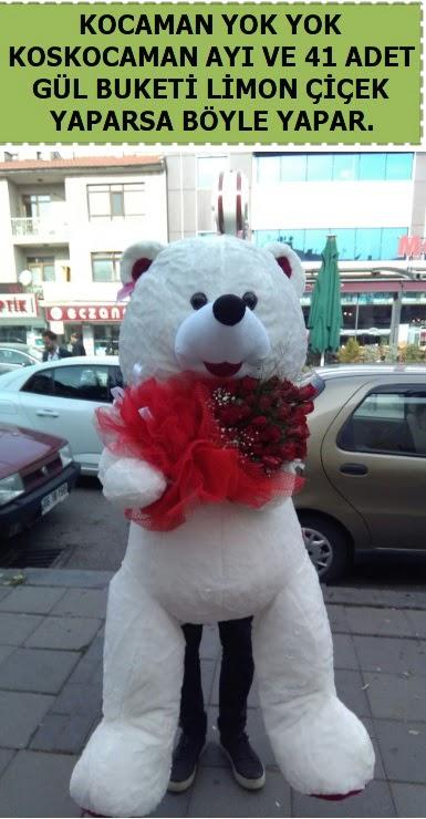 Koskocaman beyaz ayı ve 25 adet gül  Ankara Anadolu çiçek siparişi sitesi