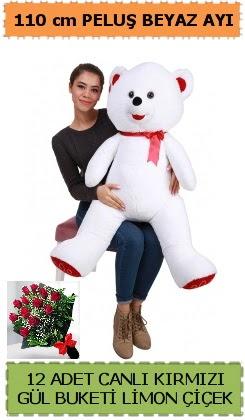 110 cm beyaz kocaman peluş ayı ve 12 gül  Ankara Anadolu çiçek gönderme