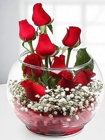 Kırmızı Mutluluk fanusta 9 kırmızı gül  Ankara Anadolu çiçek siparişi sitesi