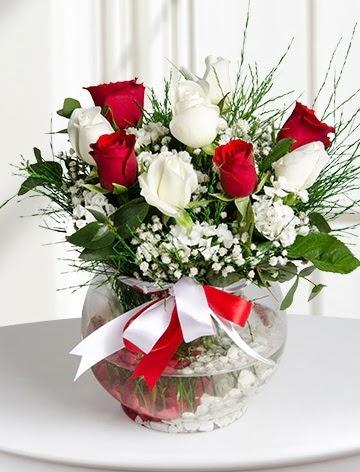 Aşk Küresi  5 beyaz 5 kırmızı gül fanusta  Ankara Anadolu internetten çiçek satışı