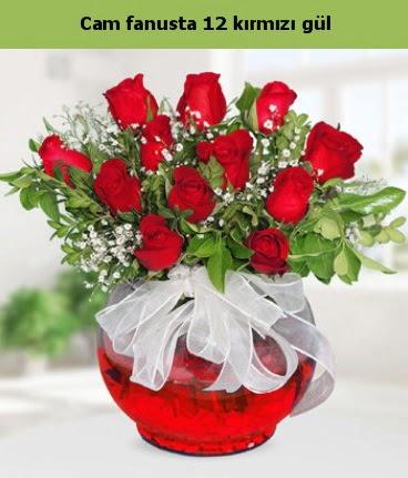 Cam içerisinde 12 adet kırmızı gül  Ankara Anadolu internetten çiçek satışı