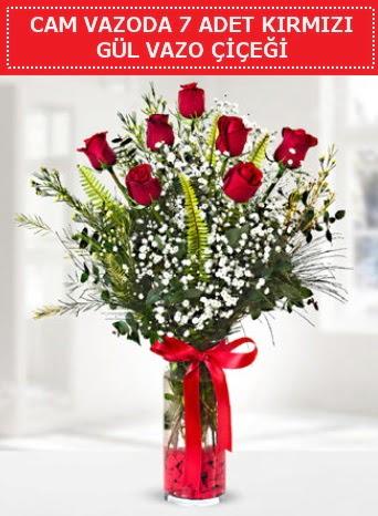 Cam vazoda 7 adet kırmızı gül çiçeği  Ankara Anadolu çiçek gönderme sitemiz güvenlidir