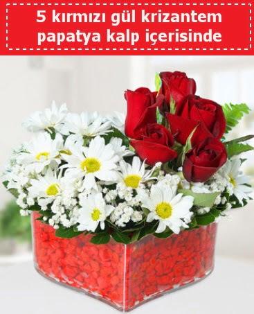 mika kalp içerisinde 5 kırmızı gül papatya  Ankara Anadolu çiçek gönderme