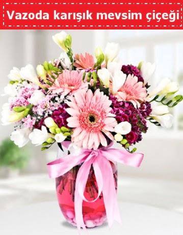 Vazoda karışık mevsim çiçeği  Ankara Anadolu çiçek , çiçekçi , çiçekçilik