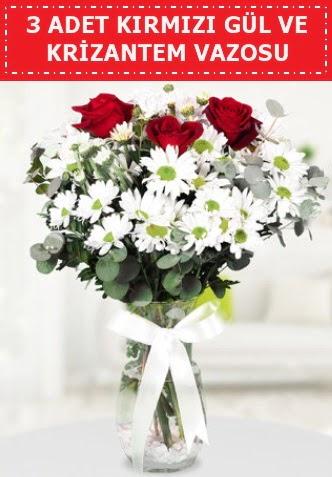 3 kırmızı gül ve camda krizantem çiçekleri  Ankara Anadolu çiçek gönderme
