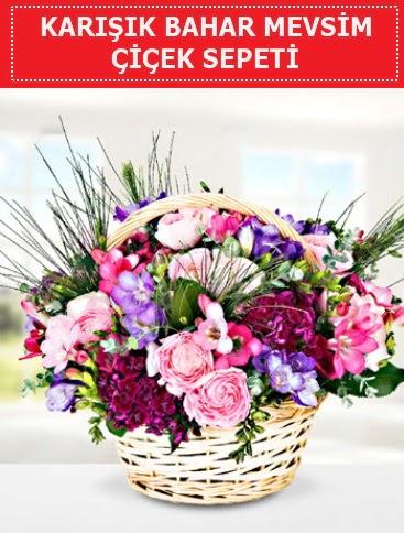 Karışık mevsim bahar çiçekleri  Ankara Anadolu ucuz çiçek gönder
