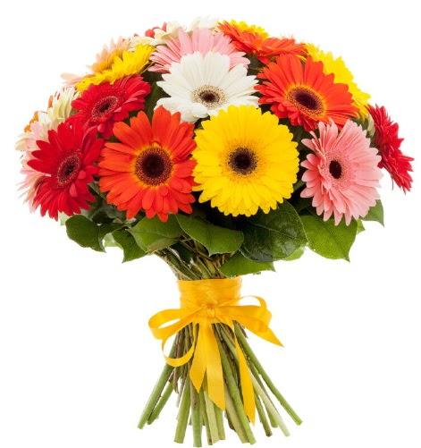 Gerbera demeti buketi  Ankara Anadolu çiçek satışı